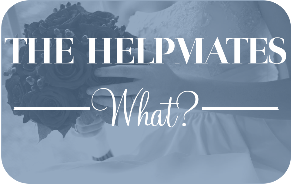 Helpmates Series Graphic - What?